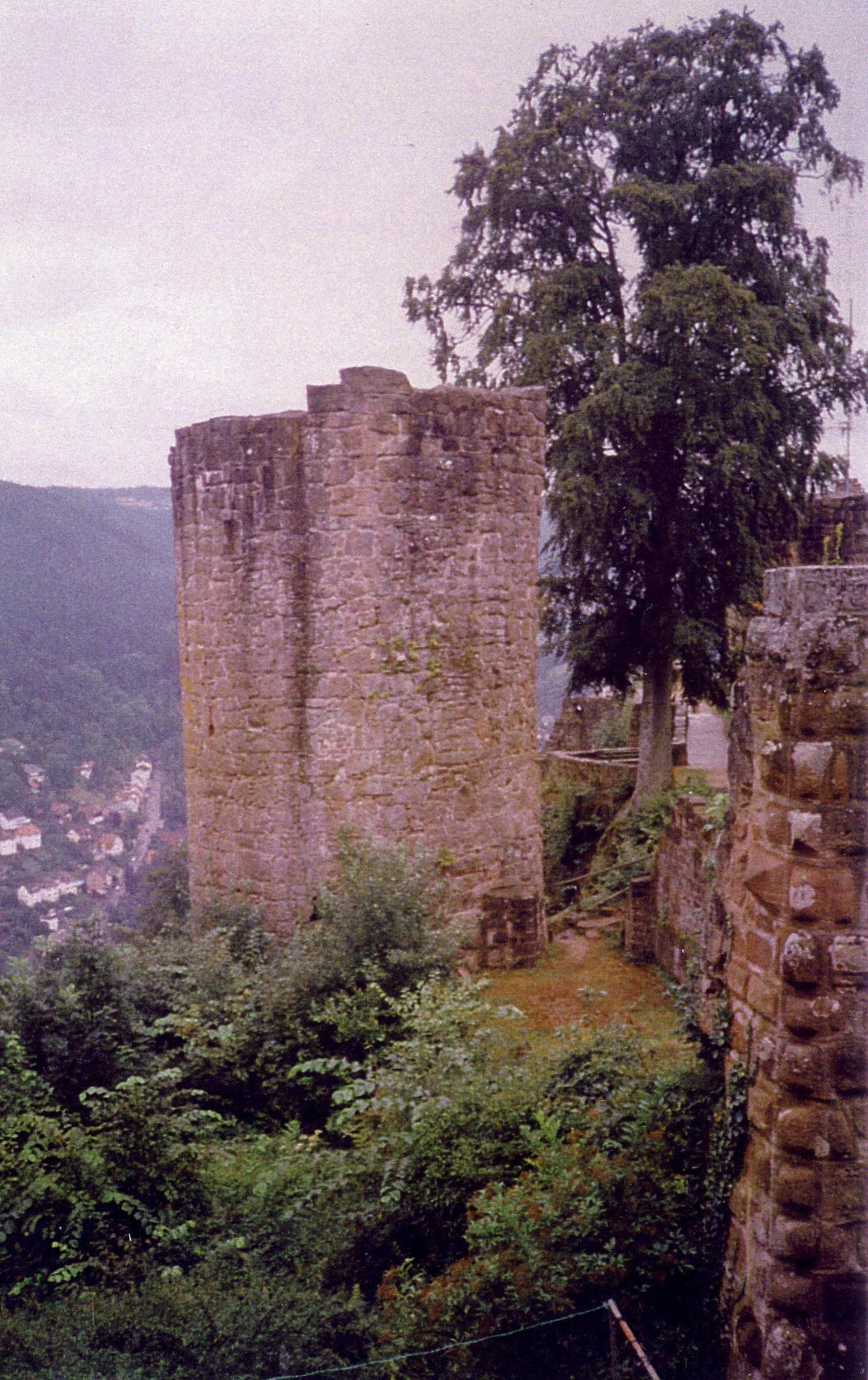 Ruine Hornberg. Foto Kees van der Leer